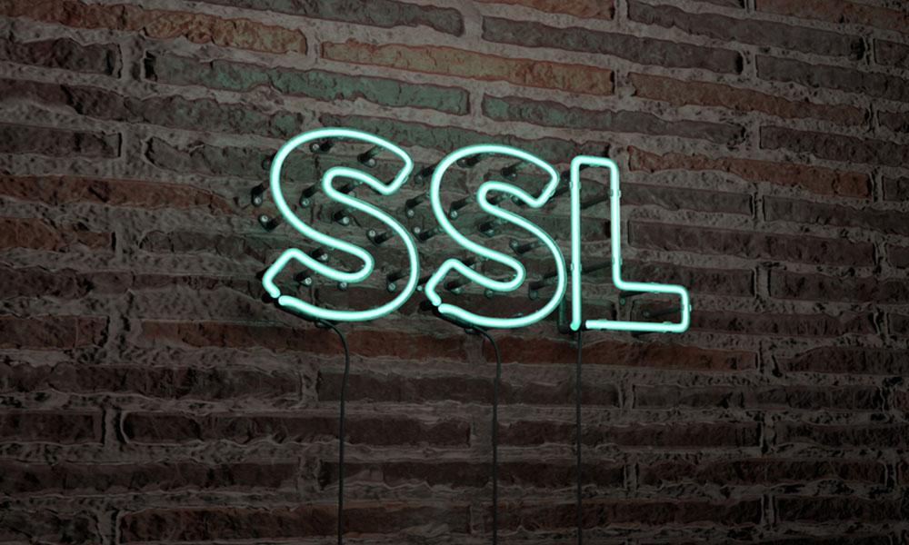Het Jaar Van De SSL-beveiliging